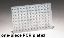 Placi  PCR si qPCR