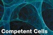 Celule competente