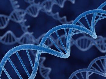 ADN Genomic