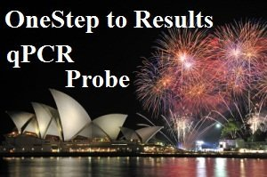 One-Step Probe qPCR