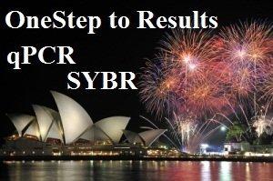 Kituri One-Step SYBR qPCR
